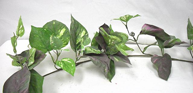 Fake pothos garland